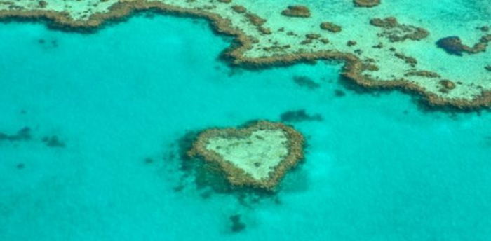 Australia to ban transshipment in Great Barrier Reef