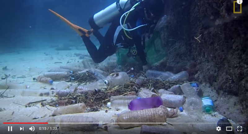 Watch Here Is How Much Plastic Is Littering The Sea