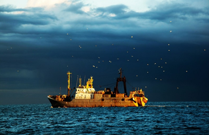 Russian Fisheries agency's research fleet is getting smaller