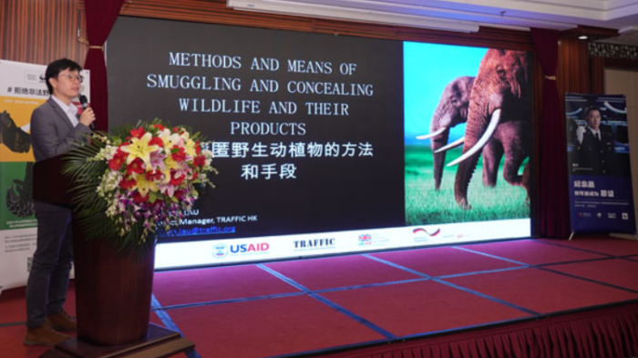 Logistics companies make pledge to tackle transportation of illegal wildlife products