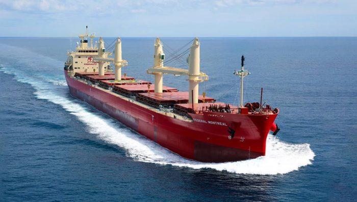 DNV GL applauds partners after launching an eco-friendly bulk carrier